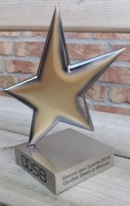 Sterne des Sports 2016 - Großer Stern in Bronze